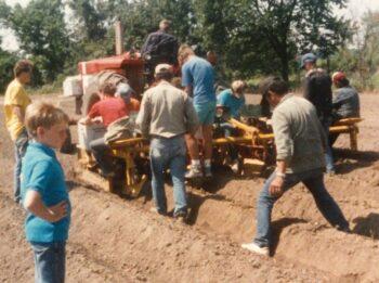 Crum planting